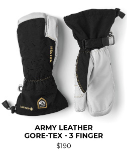 Hestra Army Leather GORE-TEX 3 Finger Glove