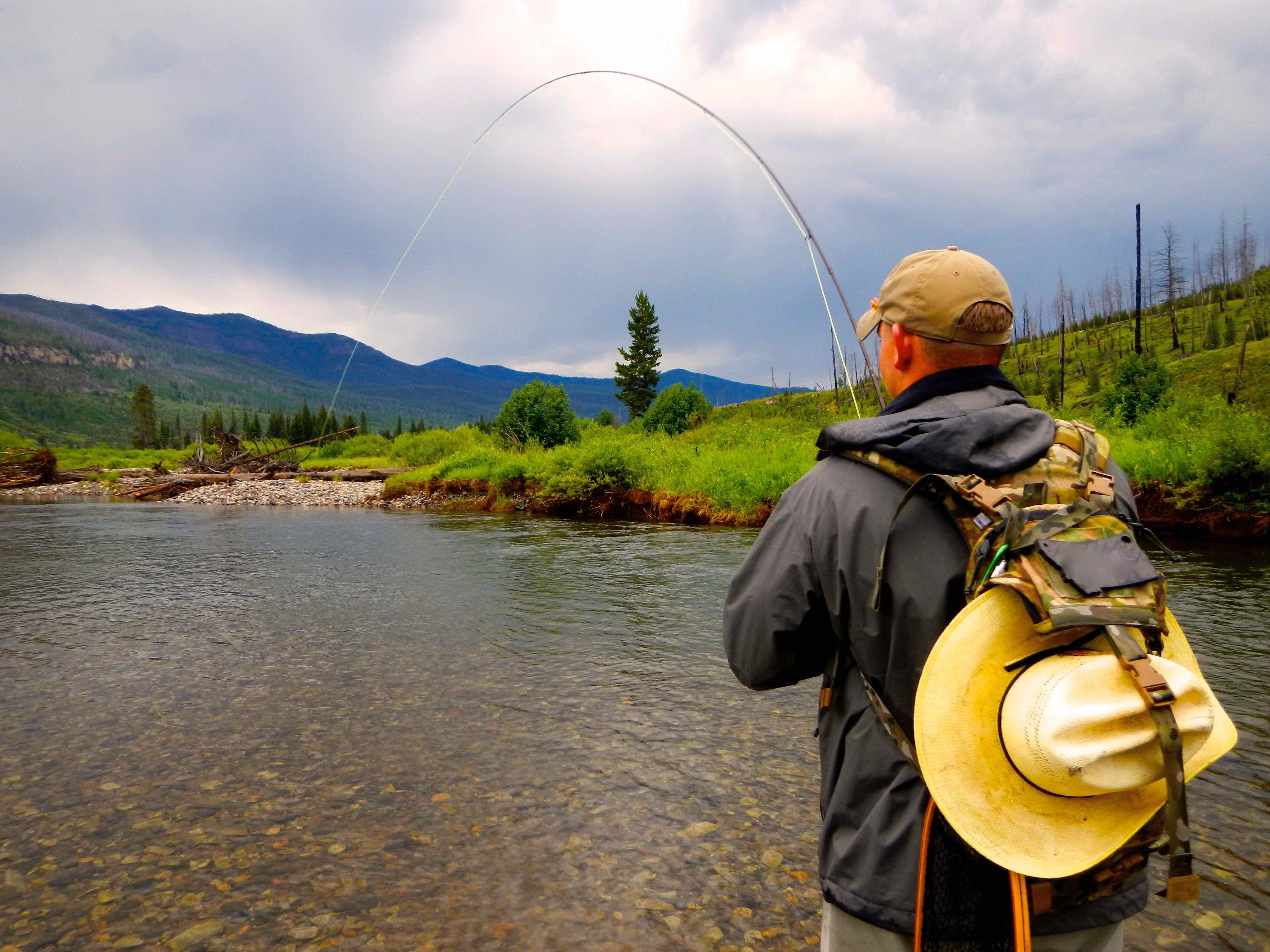 Fly Fishing in YNP