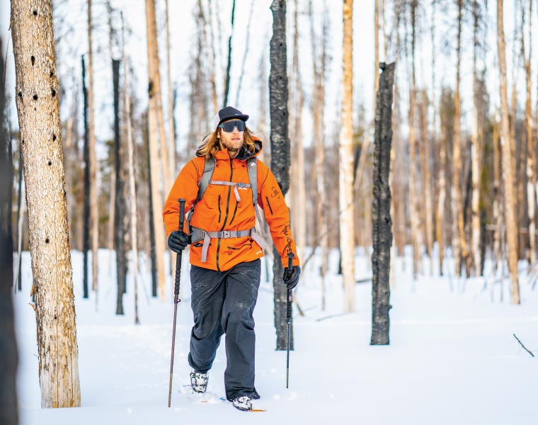 A skier touring through a forest
